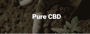 cbd hemp oil near me
