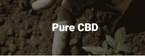 cbd hemp oil near me