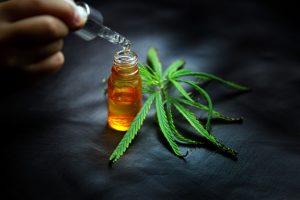 CBD oil is used