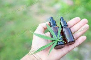 CBD vs hemp oil
