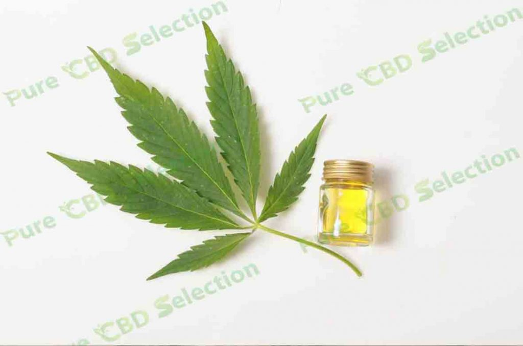 Pure CBD Oil: what is it for