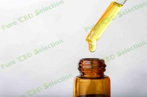 cbd oil distributors